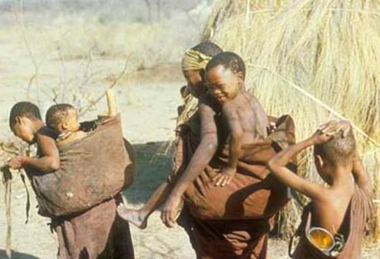 an analysis of the description of the kung and other bushman tribes Kung bushman culture it is tradition for one of its members to slaughter an ox for the entire community to share and feast upon during christmas they follow the feast with danceand celebrations they follow the feast with danceand celebrations.